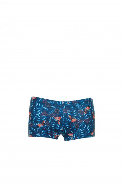 Swim Boxer Flamingo